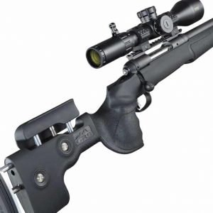 savage arms 10 grs 308 win